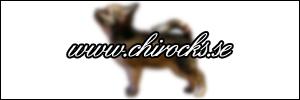 chirocksbannersudd.jpg